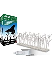 Bird Spikes Kit 10 ft Polycarbonate with Transparent Silicone Glue Tube