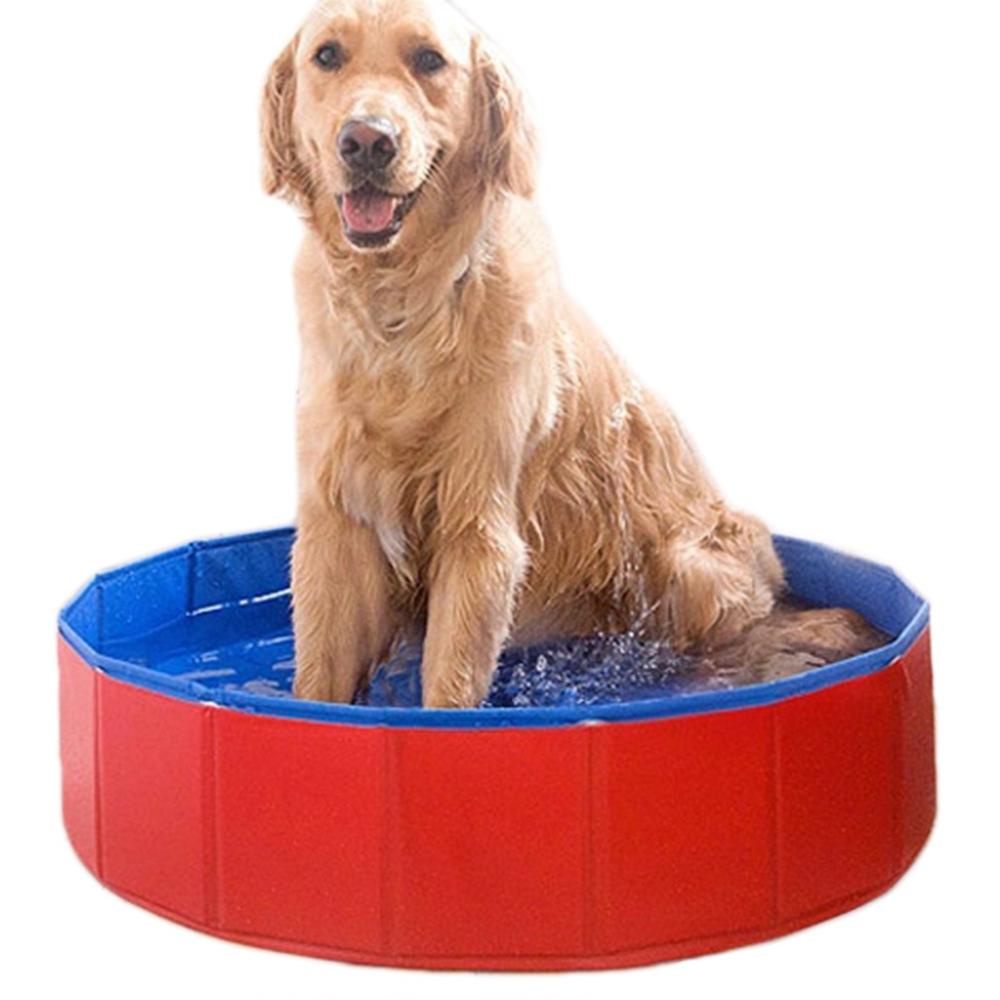 Alfie Pet by Petoga Couture - Quain Foldable PVC Pet Swimming Pool Bath Tub
