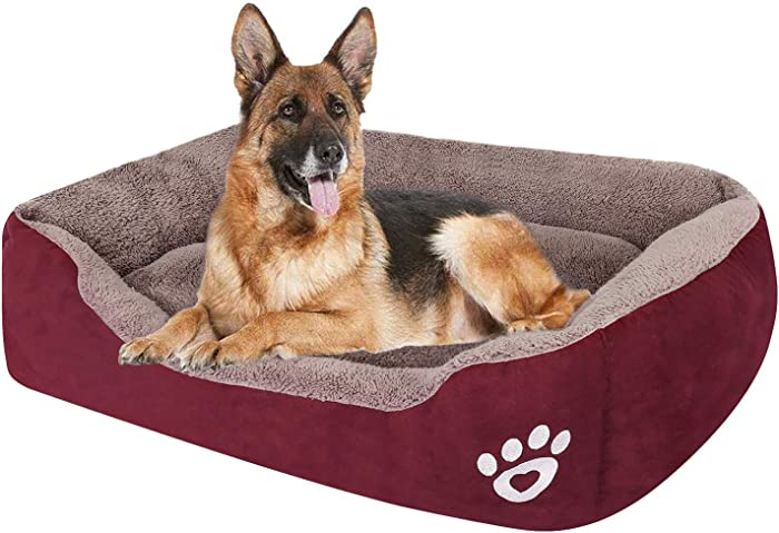 Top 10 Dogs Beds And Furniture
