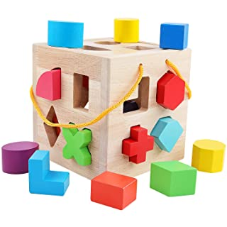 QZM Shape Sorter Toys with 19 Colorful Wood Geometric Shape Blocks and Sorter Sorting Cube Box Classic Wooden Developmental Toy for Preschool Toddlers Girl Boys Birthday Gift
