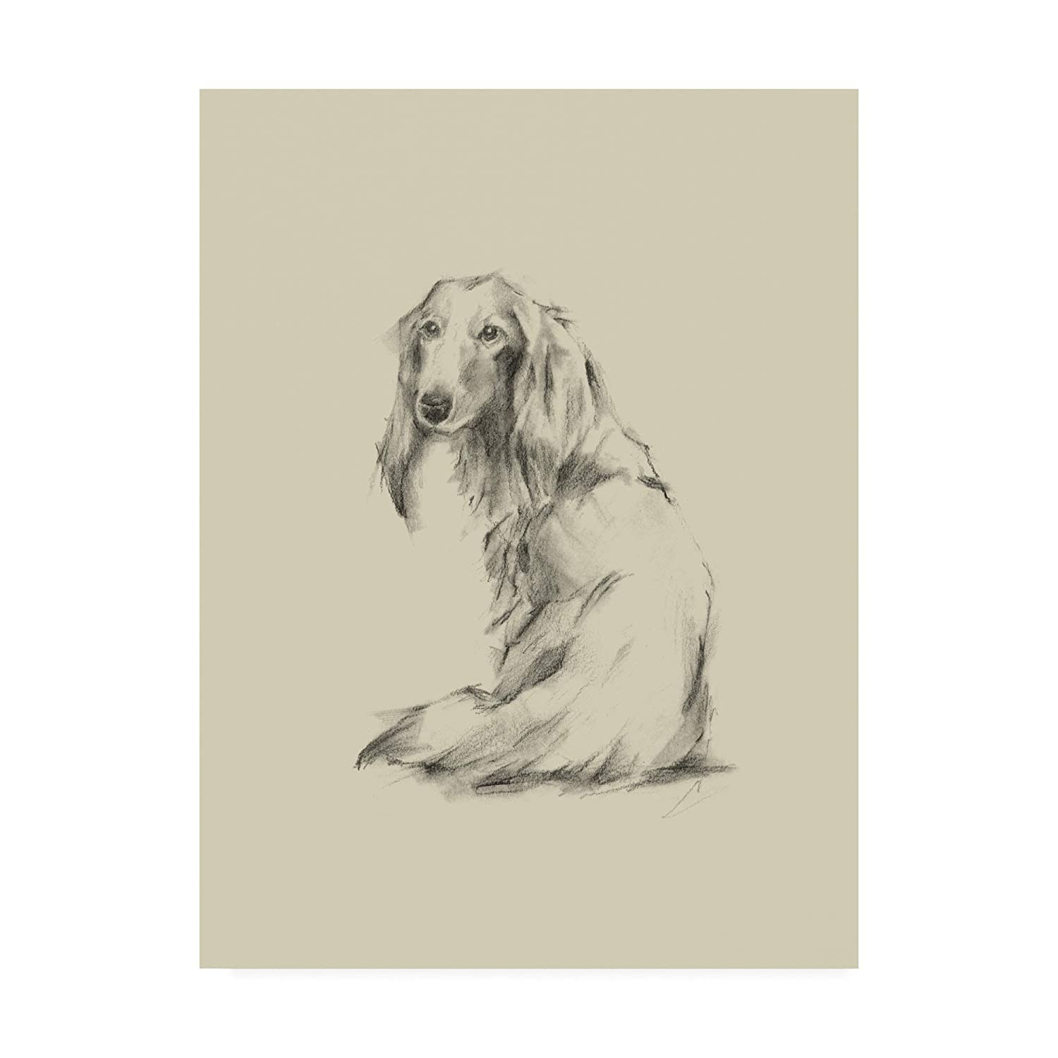 Trademark Fine Art Puppy Dog Eyes II by Ethan Harper, 14x19
