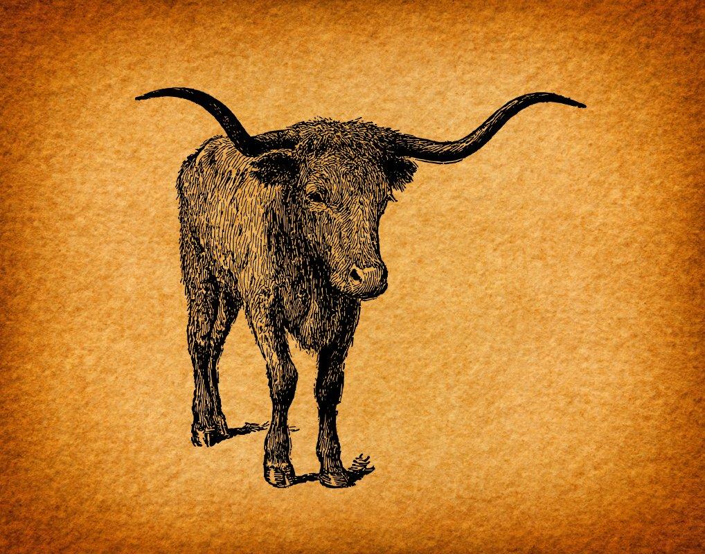 Amazon.com: Vintage Art Farm House Decor with Western Long Horn Bull ...