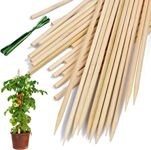 HAINANSTRY Bamboo Plant Stakes, Wood Plant Supports,Natural Bamboo Sticks for Plants/Floral/Potted Plant,Wooden Sign Posting Garden Sticks - 14 Inches 25 Pack
