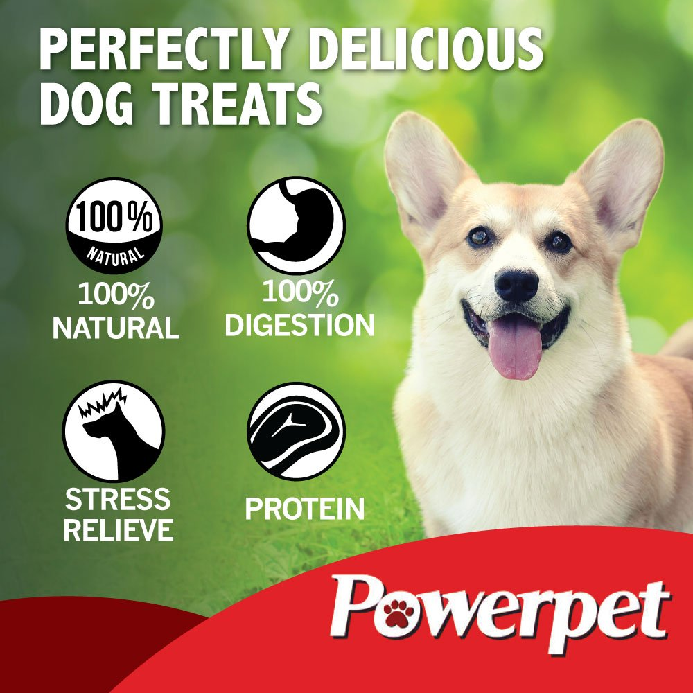 Powerpet: Smoked Beef Jerky Skins - Natural Dog Chew - 8 OZ Pack - Helps Improve Dental Hygiene - 100% Natural & Highly Digestible - Protein with Low Fat - Beef Jerky Dog Treat - Beef Skin and Meat by Powerpet (Image #4)
