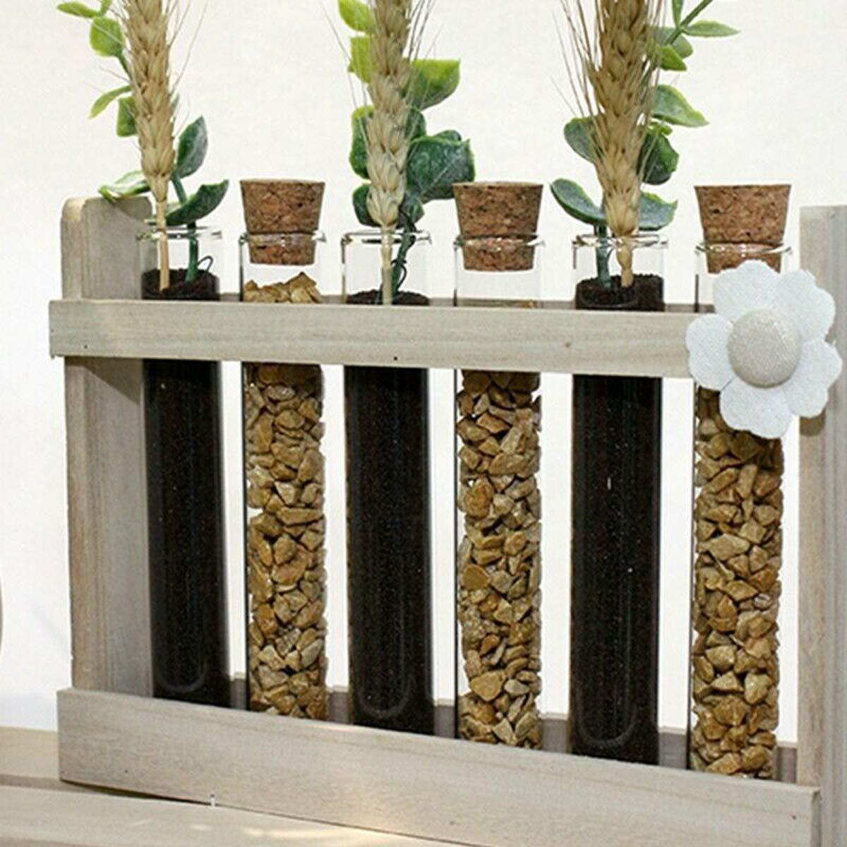 22 x 5 x 16 cm PEGANE Support Bois pour 6 Tube /à essai d/écoration