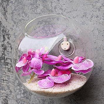 jarrones de pared colgante florero de cristal botella para flores plantas