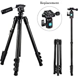 BONFOTO B73A + BH-00 58-inch Aluminum Alloy Professional Compact Travel Camera Tripod and Monopod with Panorama Pan Head + Swivel Ball Head + Carrying Bag for Smartphones and Digital Camera