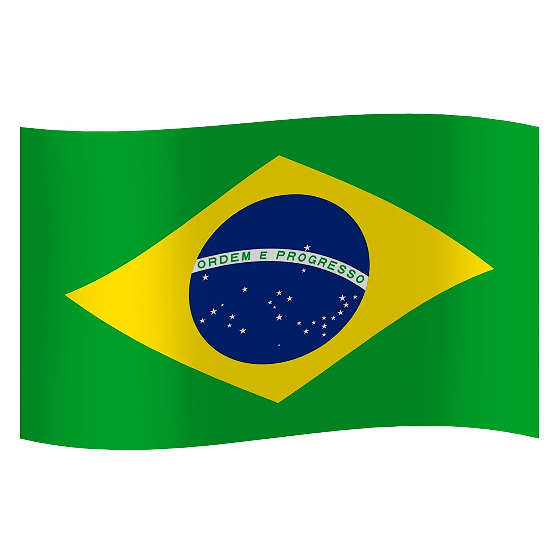 Details About Brazil Brazilian National Flag For Rio De Janeiro Carnival Festival 3 X 5 Ft