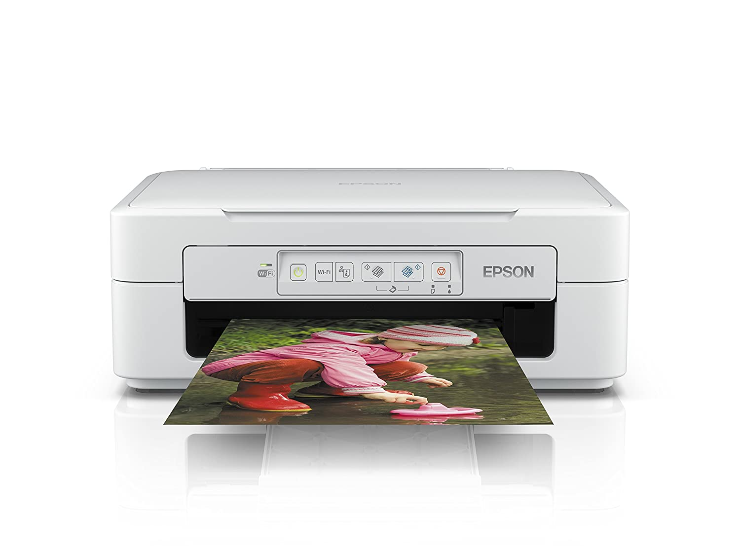 Epson Expression Home XP-247 - -: Amazon.es: Informática