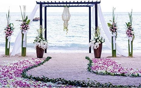 Yeele 3x2,5m Boda Fotografía Fondo Cortina Puerta Floral Camino Playa Playa Al Aire Libre BodaTelones de Fondo para la Fiesta Ceremonia Sesiones de Fotos Amantes Estudio Puntales: Amazon.es: Electrónica