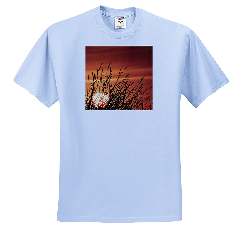 - Adult T-Shirt XL 3dRose Danita Delimont Sunset Behind Tall Grasses Scenics ts/_315087