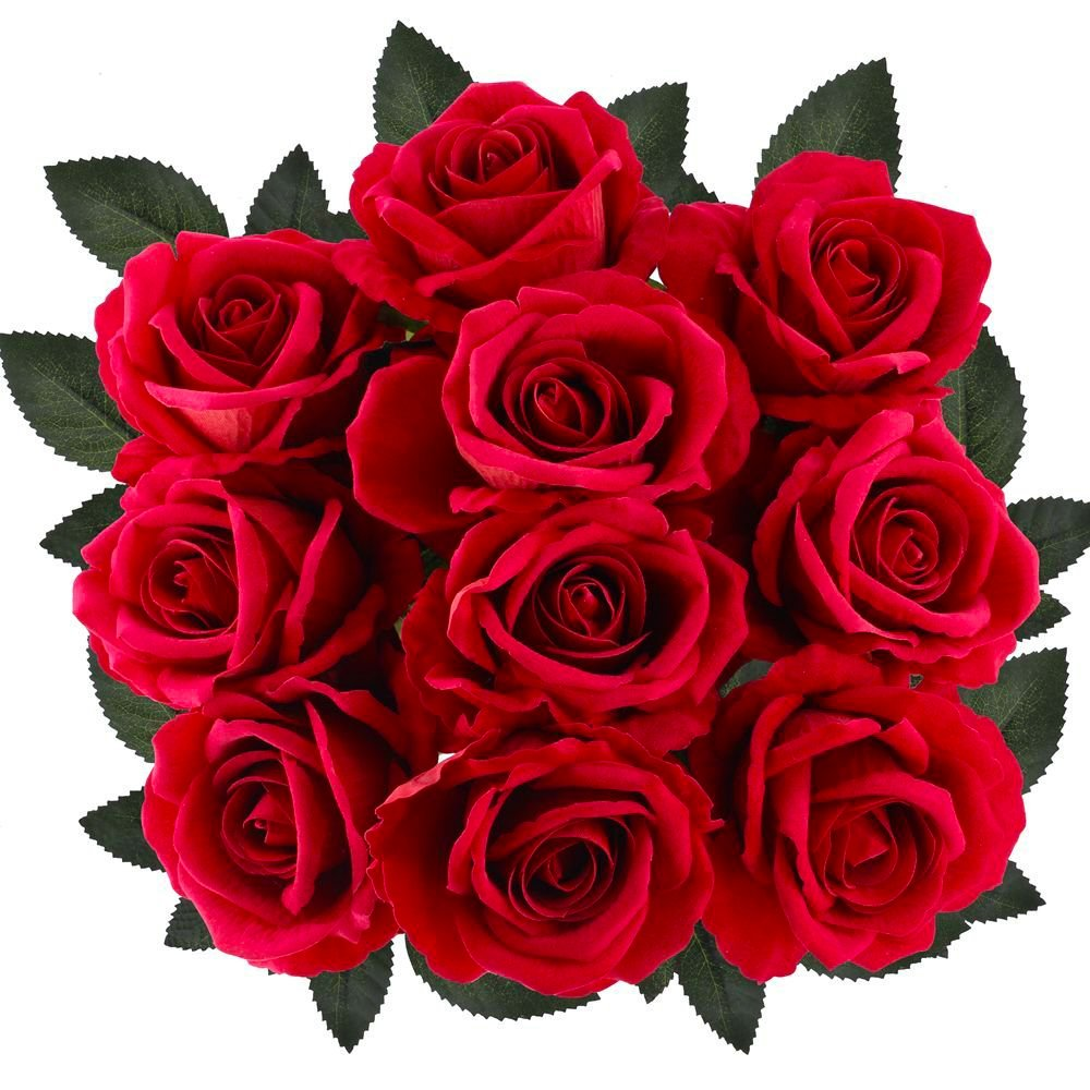 Amazon Supla 10 Pcs Artificial Roses Red With Stems Open Silk