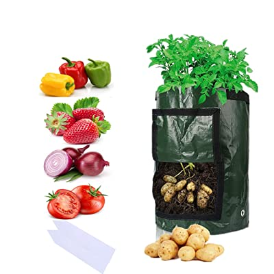 Sfee 2 Pack 10 Gallon Potato Grow Bags, PE Durable Aeration Pots Planters Bag with Handles Access Flap for Garden Farm Vegetable Carrot Onion Tomato Taro Radish Peanut (7 Gallons, Green) : Garden & Outdoor