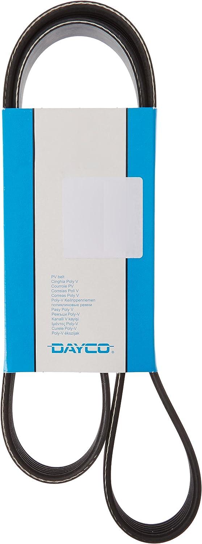 DAYCO 6PK1715 Cinghia Poly-V