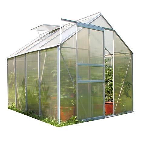 Zelsius Aluminium Gewächshaus für den Garten | inklusive Fundament | 250 x 190 cm | 4 mm Platten | Vielseitig nutzbar als Tre