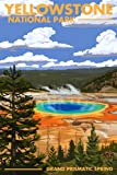 Yellowstone National Park - Grand Prismatic Spring (9x12 Art Print, Wall Decor Travel Poster)