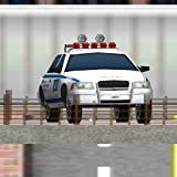 Police Car City Operations 3d