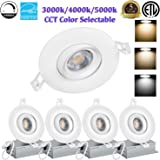 Amazon.com: Cold White, 10W : Refletor RGB Led Flood Light ...