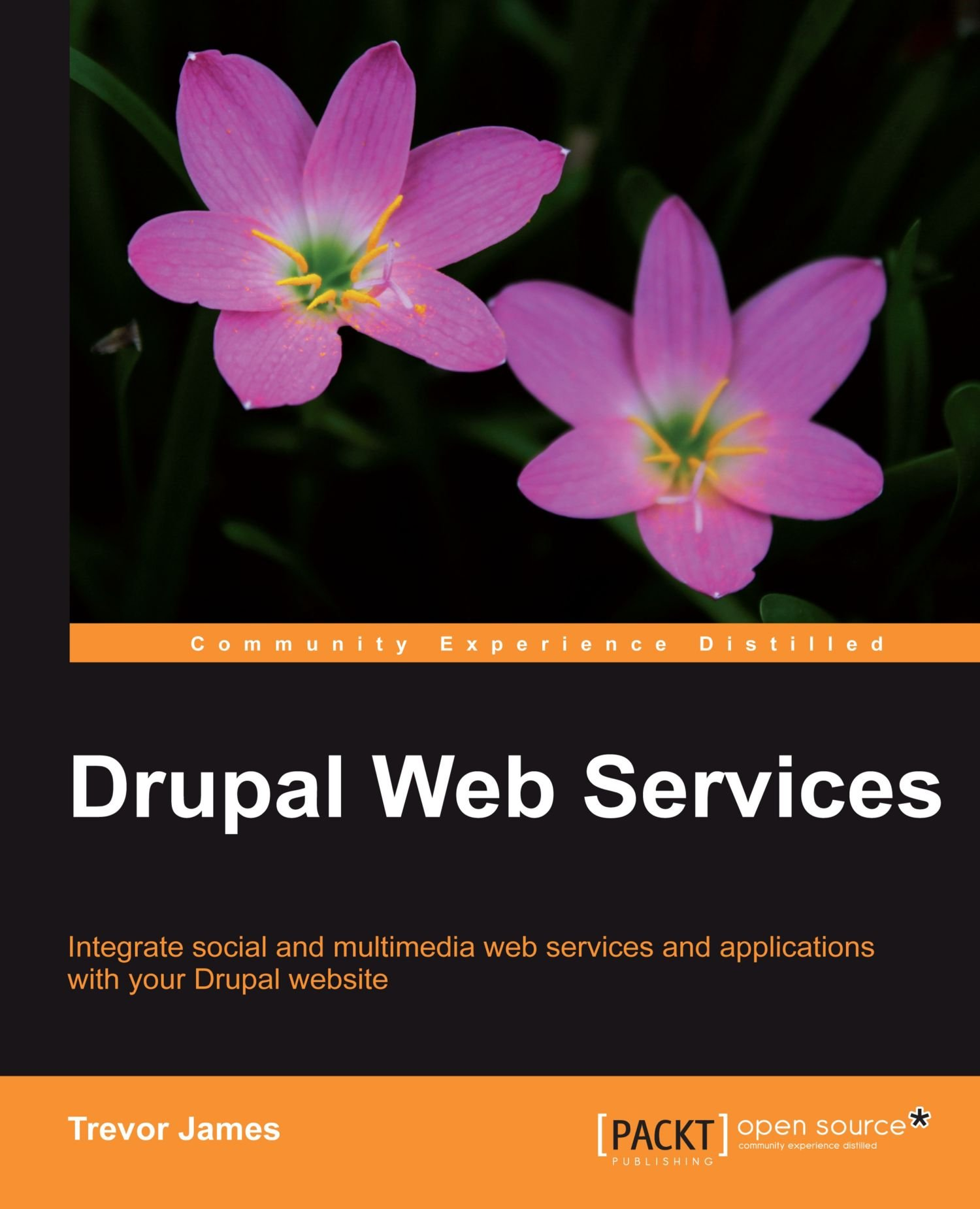 Download Drupal Web Services PDF