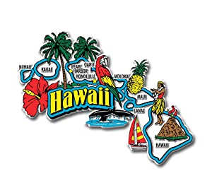 Hawaii State Jumbo Map Magnet
