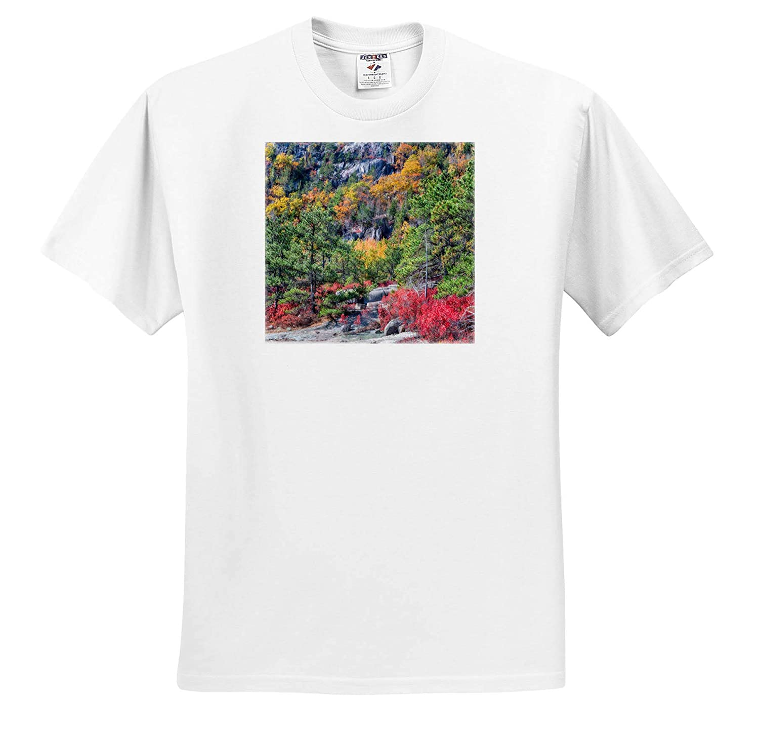 Adult T-Shirt XL Landscapes Autumn Leaves on Hillside 3dRose Mike Swindle Photography ts/_317144