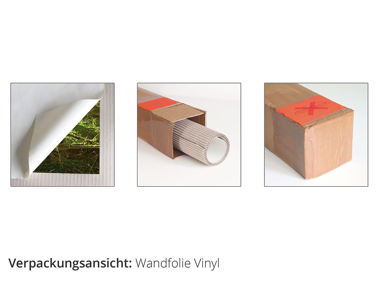 Artland Qualit/ätsbilder I Poster Kunstdruck Bilder 40 x 30 cm Tiere V/ögel Foto Orange B0XP der Flug der Wildg/änse