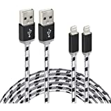 Fenergy iPhone Charging Cord Certified 10 Ft / 3 M Nylon Lightning to USB Cable (2 Pack)