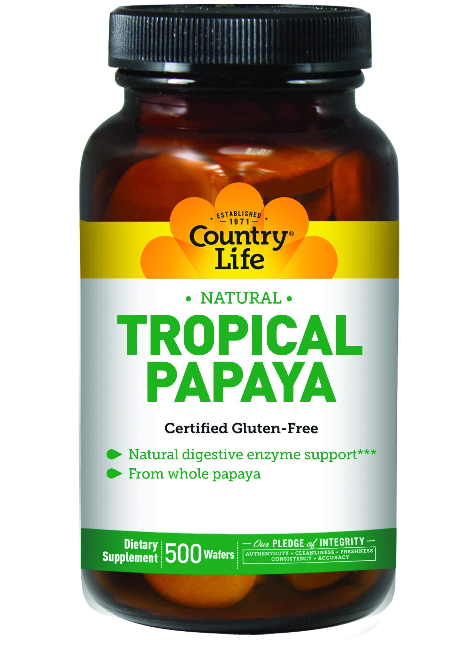 Papaya Chewable Tablets 500 Tablet