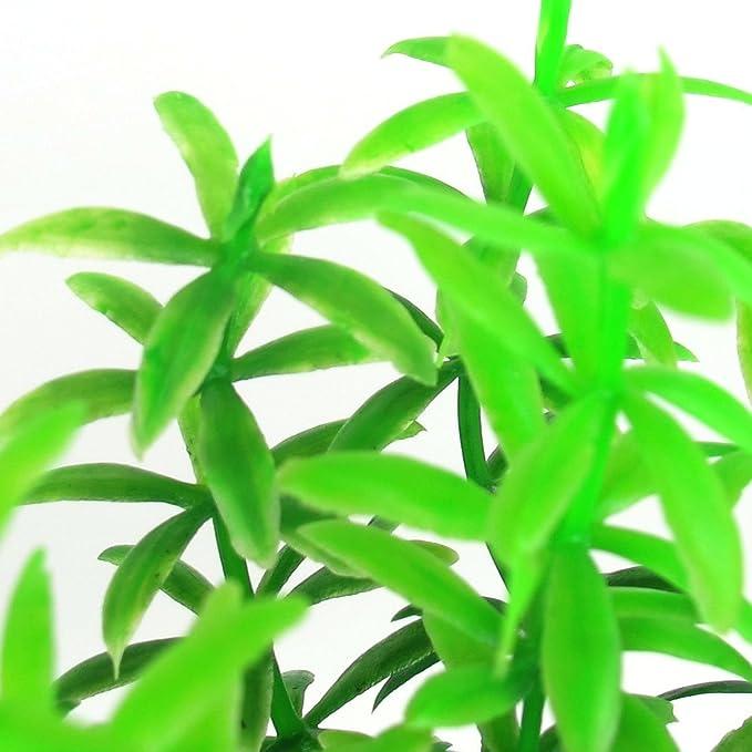 Amazon.com : eDealMax Peces de plástico acuario del tanque de la planta Bajo el agua Hierba Verde Decor 10cm : Pet Supplies