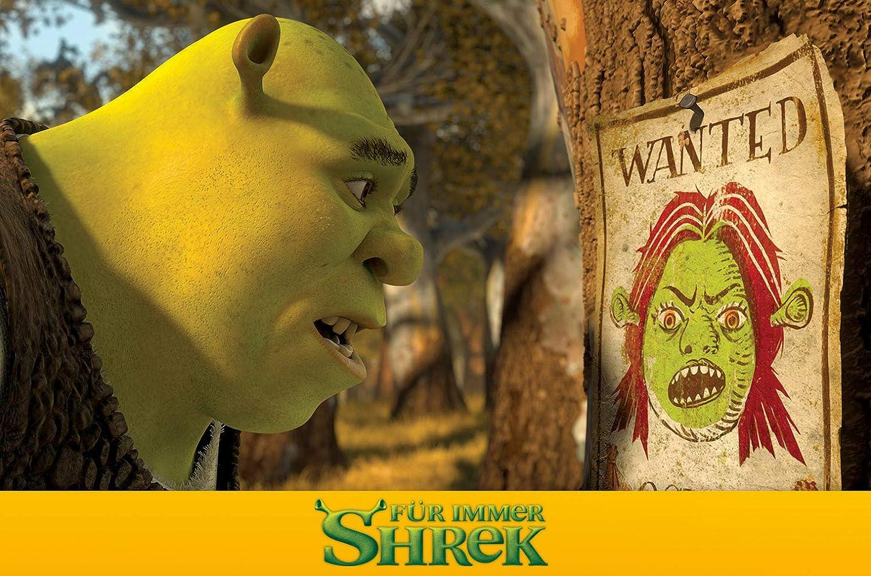 Shrek 4 Für Immer Shrek Das Große Finale Amazonde Mike