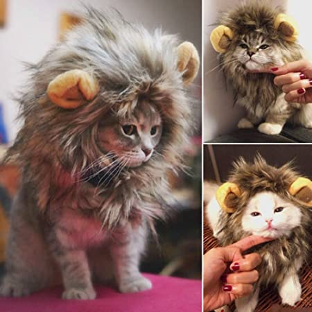 Amazon.com : Kicode Furry Pet Hat Costume Lion Mane Wig For Cat Pets Fancy Dress Up With Ears Festival Party Home : Pet Supplies
