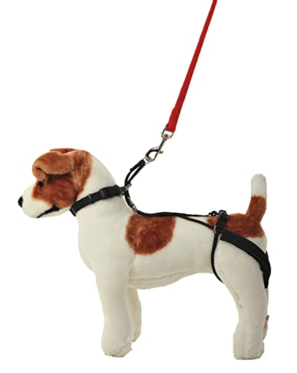 Amazon.com : Hannadees Horgan Harness No Pull Back Leg Dog Harness