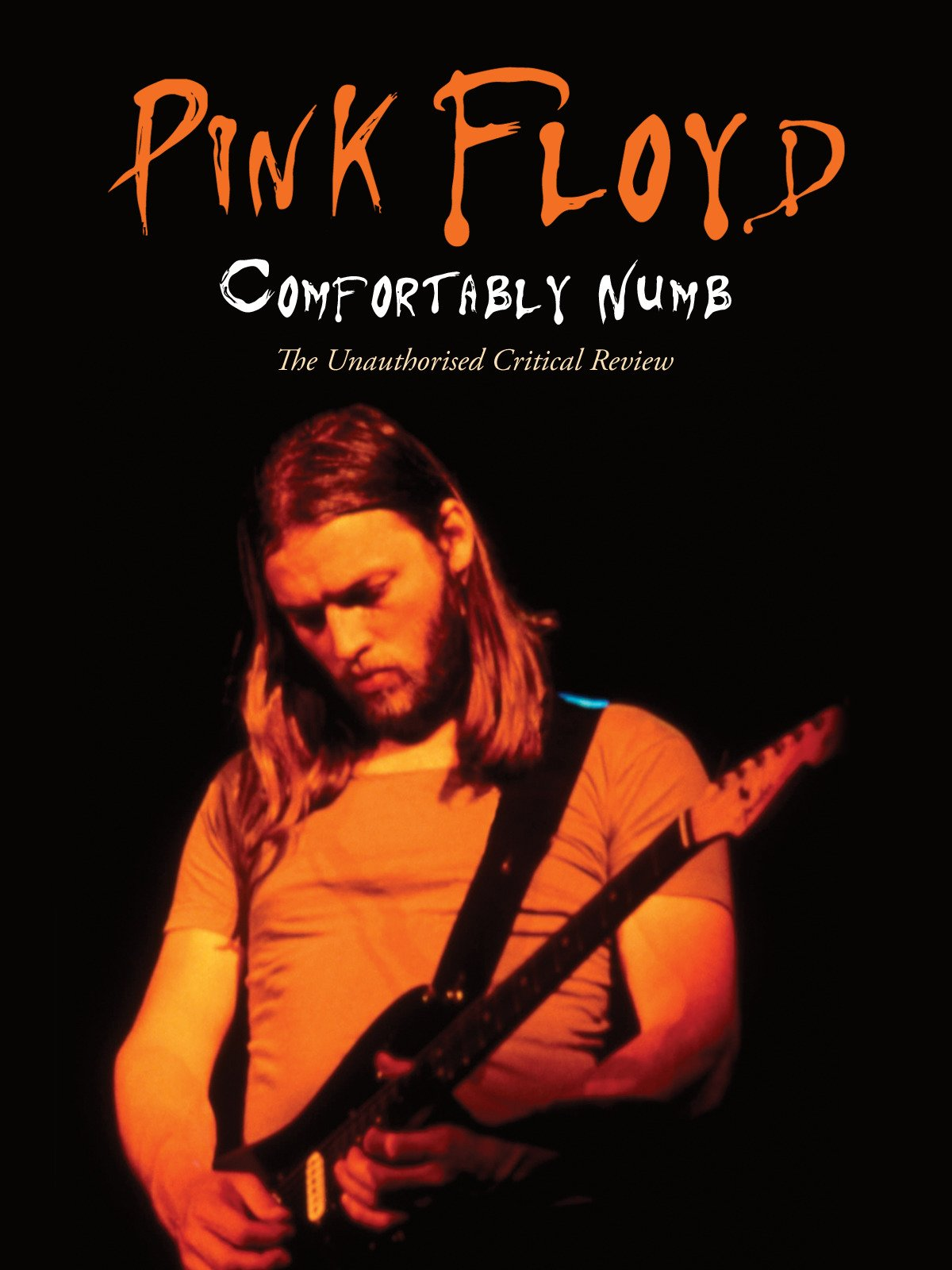 Amazon com: Watch Pink Floyd - Comfortably Numb | Prime Video