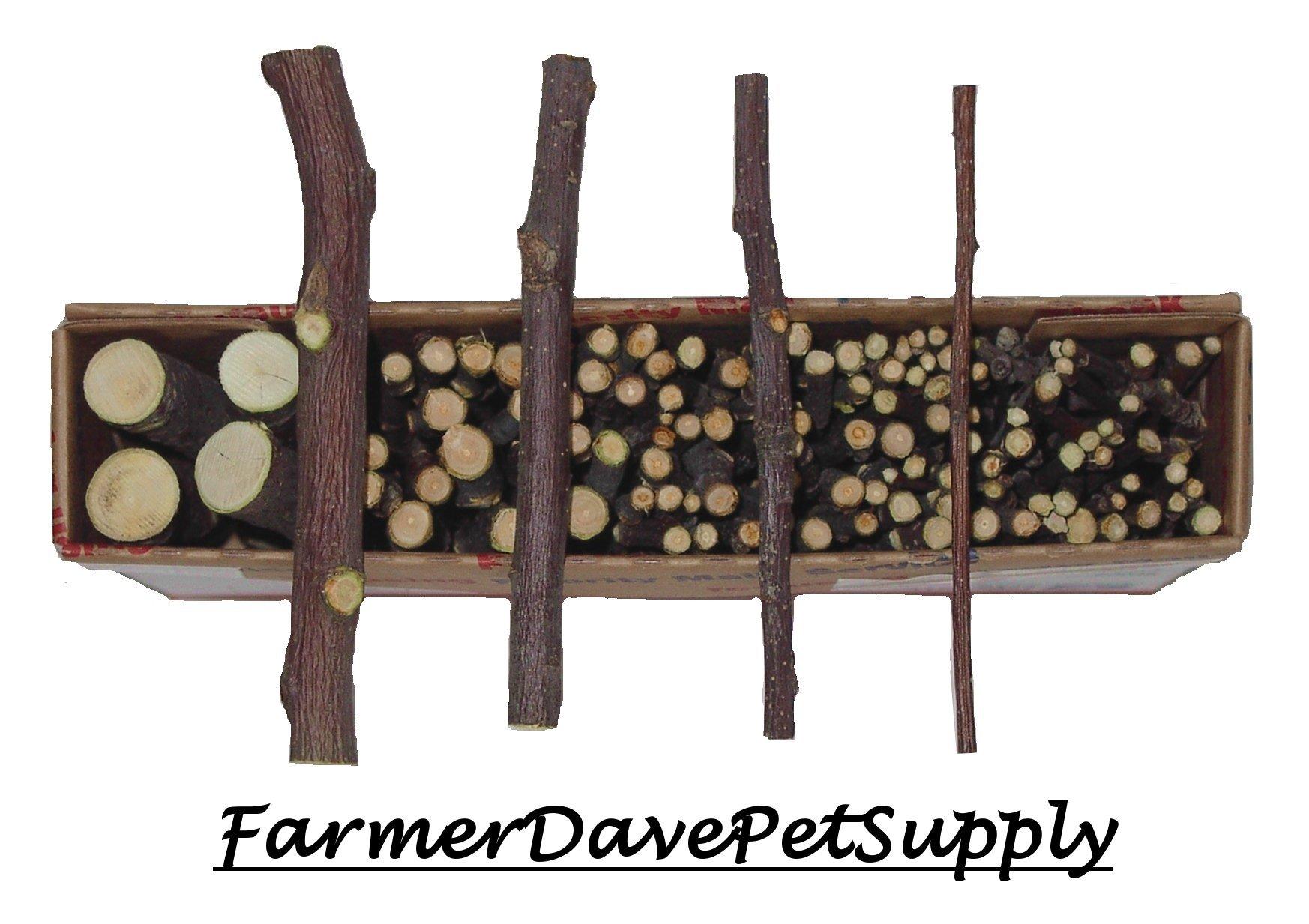 FarmerDavePetSupply 120 MIXED APPLE CHEW BONUS PACK FOR SMALL ANIMALS