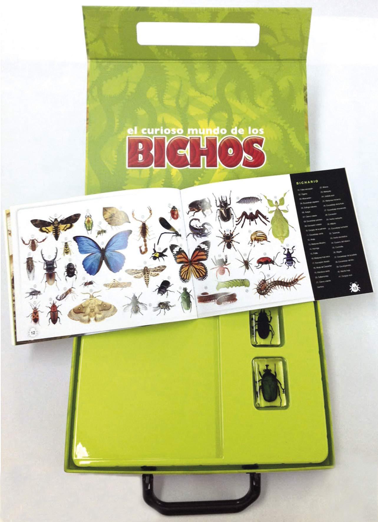 Amazon.com: El curioso mundo de los bichos (9788467744330 ...