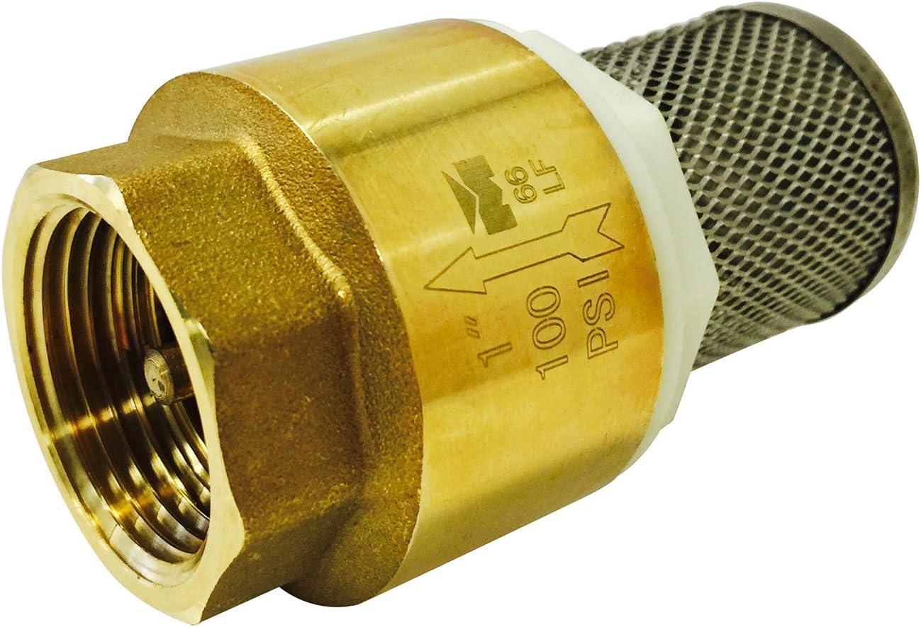 Parts2O TC2503LF 1-Inch Foot Valve