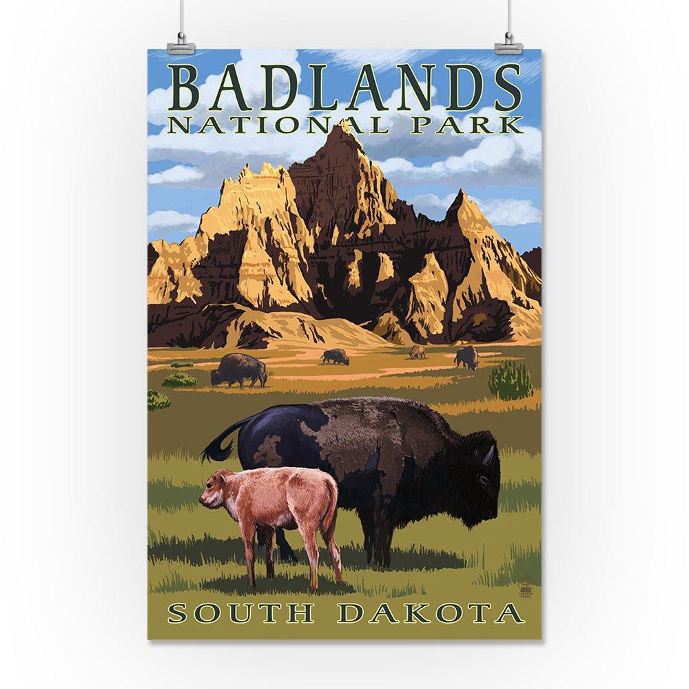 Amazon.com: Parque Nacional Badlands, Dakota del Sur – Bison ...