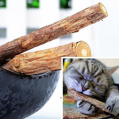 Bruselas08 - Juego de 2 cepillos de Dientes para Gatos y Gatos, Juguetes de Madera