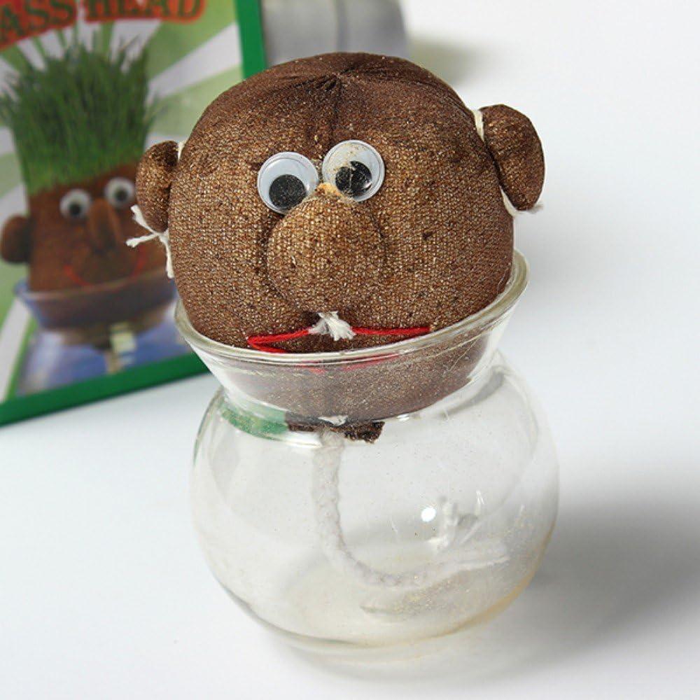 Mini planta mágica en maceta con forma de muñeco de Kungfu Mall ...