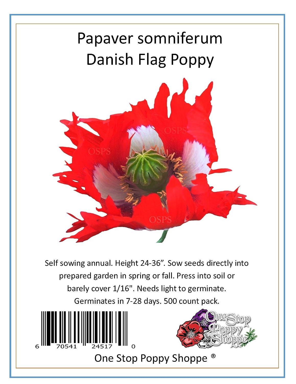 Amazon 500 Poppy Flower Seeds Papaver Somniferum Danish Flag