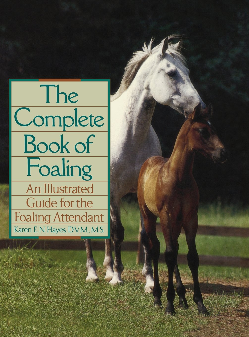 Theplete Book Of Foaling: An Illustrated Guide For The Foaling  Attendant (howell Reference Books): Karen E N Hayes: 9780876059517:  Amazon: Books