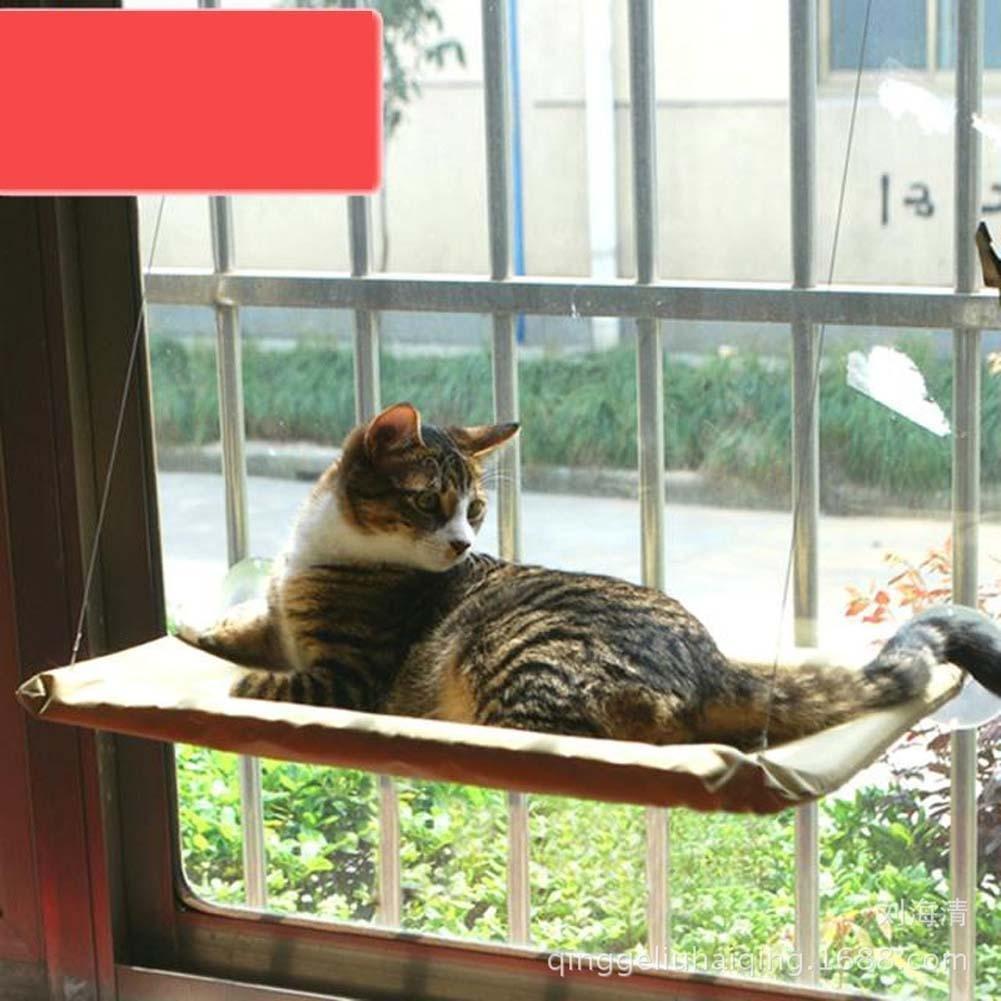 jieyan Kitty chaton sur fenêtre se lit Pet Étagère chat Perche Siège haute Hamac Generic