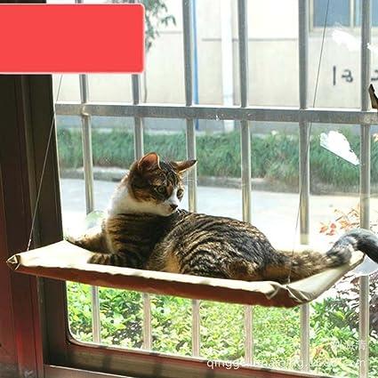Amazon.com : Cat Kitty Basking Window Hammock Perch Cushion Bed Hanging Shelf Seat Mounted : Pet Supplies
