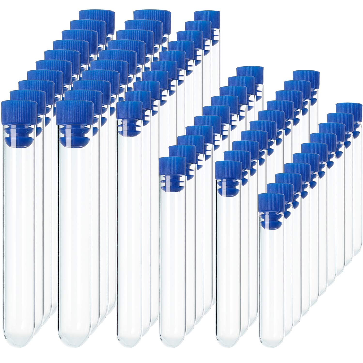 60 Pieces Clear Plastic Test Tubes with Blue Caps, 12 by 60 mm, 12 by 75 mm, 12 by 100 mm, 13 by 78 mm, 15 by 100 mm, 16 by 100 mm Pangda