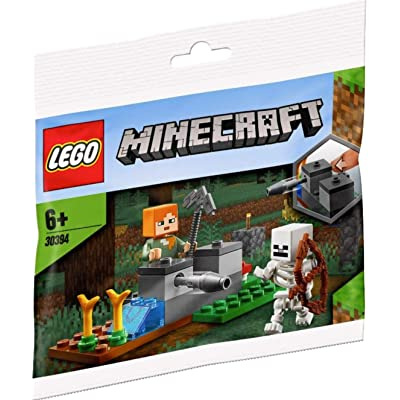 LEGO Minecraft 30394 The Skeleton Defense (22 Pcs): Toys & Games