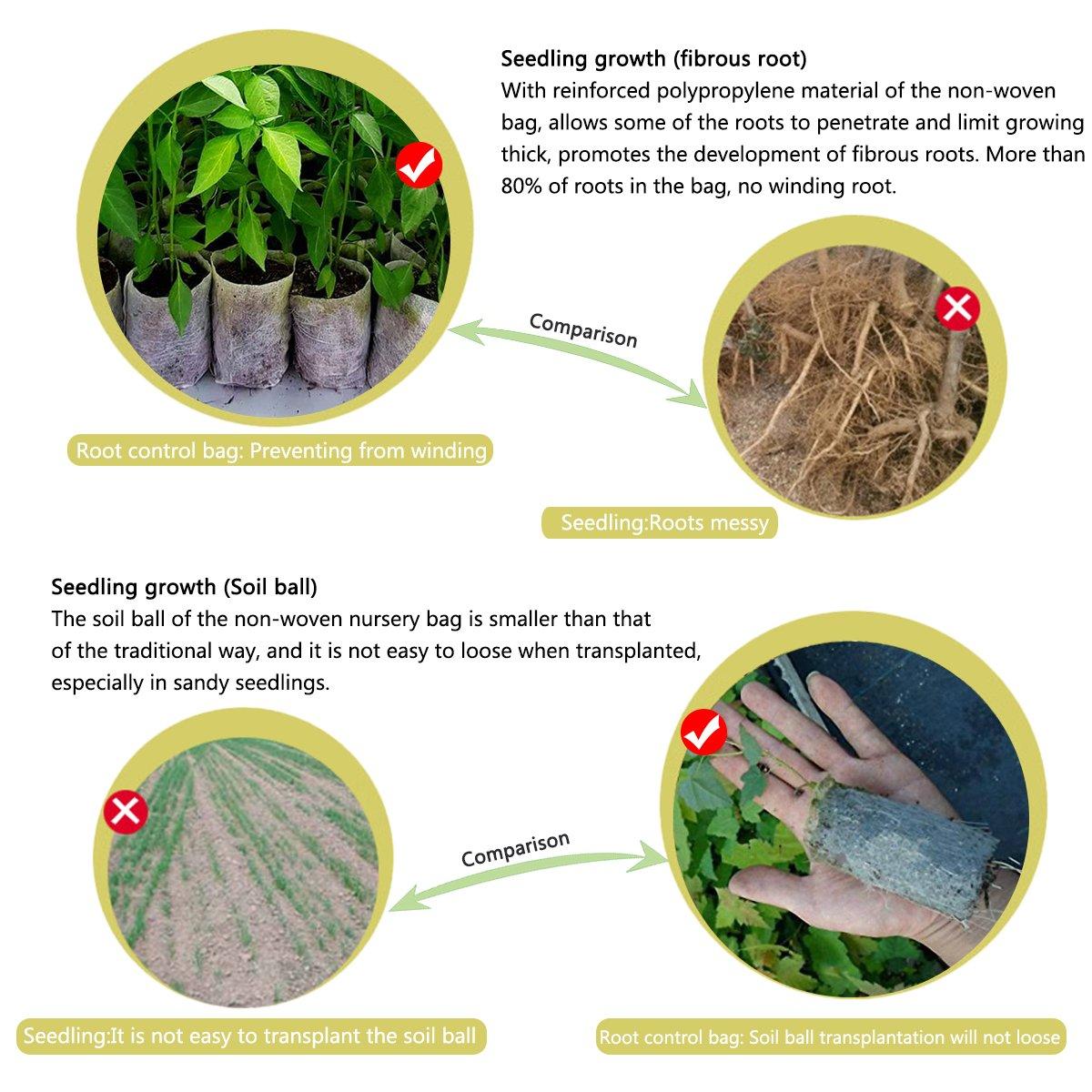 Non-Woven Fabric Sämling abbaubare Pflanzung Gartenbau Nursery Nutrition Bag