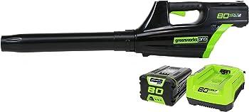 Greenworks 500 CFM Handheld Leaf Blower