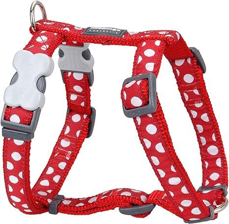 Red Dingo GmbH Spots - Collar para perro , Rojo, S: Amazon.es ...