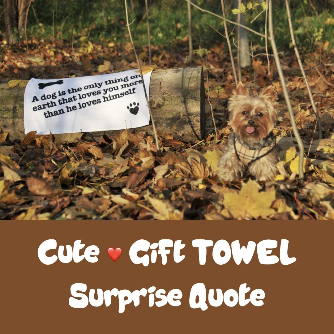 Adorable serviette pour chiot avec citation Anti-odeur Hamac pour si/ège arri/ère de voiture pour chien pour transport s/ûr et propre int/érieur de voiture Imperm/éable