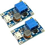 Rasbee USBポート 2A DC-DC ブーストステップアップ 転換モジュール Micro USB 2V-24V to 5V-28V 9V 12V 24V 2個 [並行輸入品]
